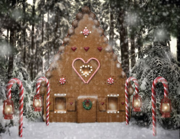 Christmas House.Photography Background In Fabric Christmas House Backdrop 1911