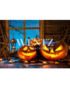 Photography Background in Fabric Halloween / Backdrop 1239