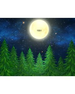 Photography Background in Fabric Moonlight in the Forest / Backdrop 1551
