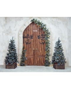 Photography Background in Fabric Christmas Wooden Door / Backdrop 1559