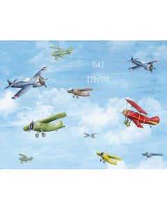 Photography Background in Fabric Airplane / Backdrop 1582