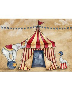 Photography Background in Fabric Circus / Backdrop 1586