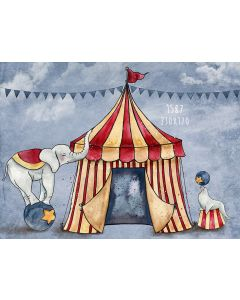 Photography Background in Fabric Circus / Backdrop 1587