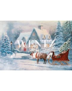 Photographic Background in Fabric Santa Claus House With Sleigh / Backdrop 2313