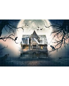 Photography Background in Fabric Halloween Haunted House / Backdrop 2355