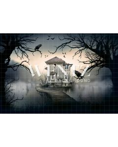 Photography Background in Fabric Halloween Lake House / Backdrop 2356