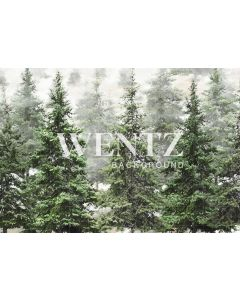 Photography Background in Fabric Pine Forest / Backdrop 2370