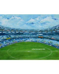 Photography Background in Fabric Hand Painted Soccer Field / Backdrop CW003
