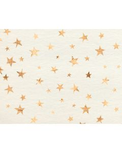 Photography Background in Fabric Golden Stars With Beige / Backdrop 1632