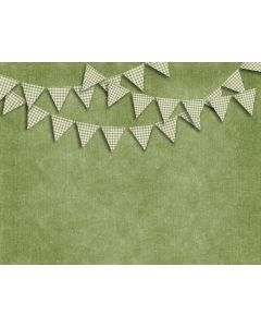 Photography Background in Fabric Redneck Party Flags / Backdrop 1806