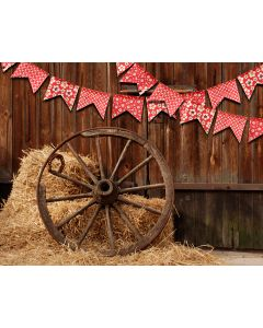 Photography Background in Fabric Redneck Party / Backdrop 1817