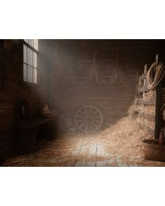 Photography Background in Fabric Barn / Backdrop 1819