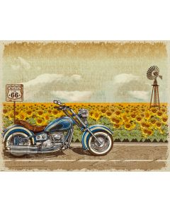 Photography Background in Fabric Motorcycle on the Road and Sunflower Field / Backdrop 1827