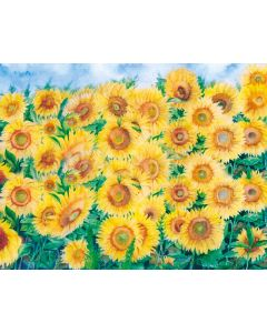 Photography Background in Fabric Sunflower Field / Backdrop 1903