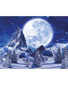 Photography Background in Fabric Christmas / Backdrop 1910