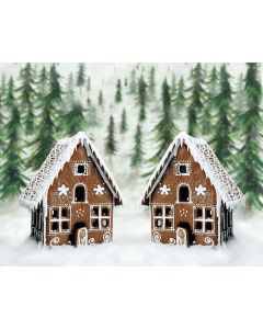 Photography Background in Fabric Christmas House / Backdrop 1912