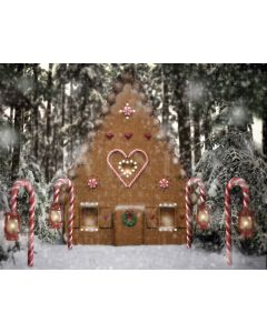 Photography Background in Fabric Christmas House / Backdrop 1911