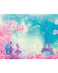 Photography Background in Fabric Paris Travel Ballerinas and Flowers Newborn / Backdrop 2063