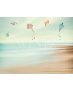 Photography Background in Fabric Beach and Kites Newborn / Backdrop 2012