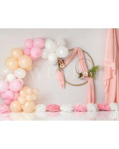 Photography Background in Fabric Scenarios Rose Balloon and Flower Circles Newborn / Backdrop 2033