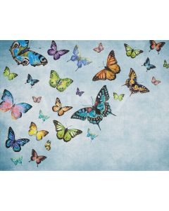 Photography Background in Fabric Butterflies / Backdrop 2094