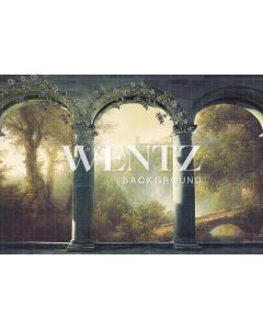 Photography Background in Fabric Arches With Flowers / Backdrop 2298