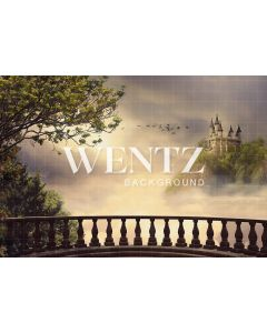 Photography Background in Fabric Castle / Backdrop 2299