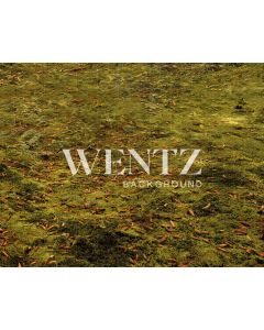 Photography Background in Fabric Forest Green Floor / Backdrop 2218