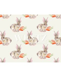 Photography Background in Fabric Easter Bunny / Backdrop 1653