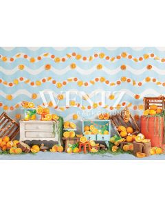 Photography Background in Fabric Oranges / Backdrop 2289