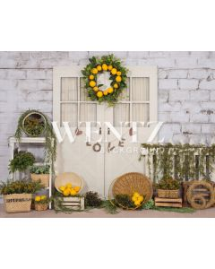 Photography Background in Fabric Sicilian Lemon and Door / Backdrop 2227