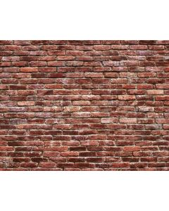 Photography Background in Fabric Bricks / Backdrop 2118