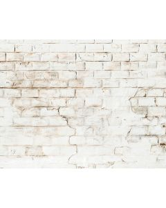 Photography Background in Fabric Bricks / Backdrop 2136