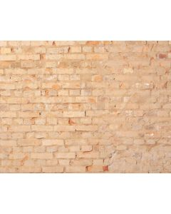 Photography Background in Fabric Bricks / Backdrop 2165