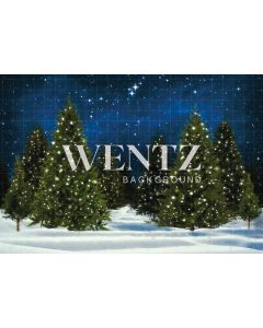 Photography Background in Fabric Christmas Pines / Backdrop 2302