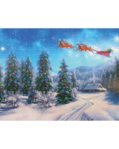 Photography Background in Fabric Christmas Pines / Backdrop 2166