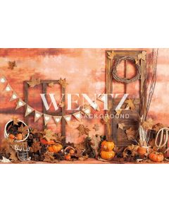 Photography Background in Fabric Fall Doors / Backdrop 2291
