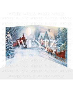 Photography Background in Fabric Christmas Set 2D / WTZ126